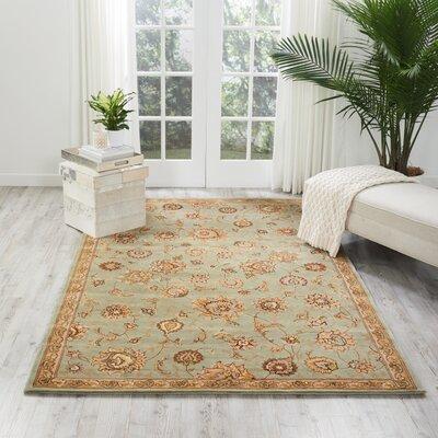Hand Woven Wool Aqua Indoor Area Rug Rug Size: 39 x 59