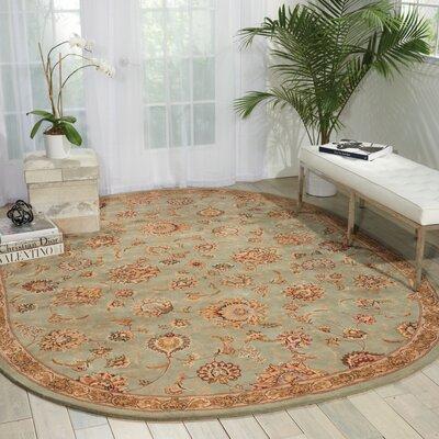 Hand Woven Wool Aqua Indoor Area Rug Rug Size: 76 x 96