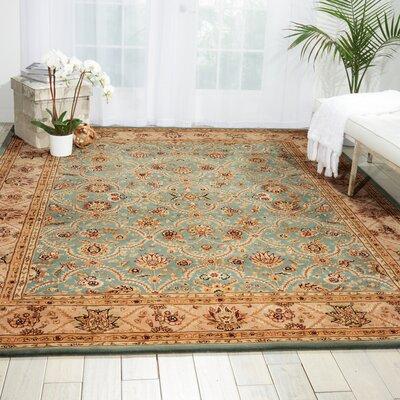Hand Woven Wool Blue Indoor Area Rug Rug Size: 79 x 99