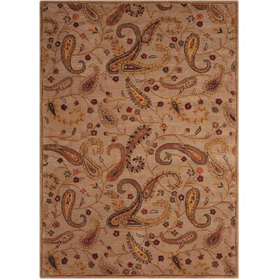 Broomhedge Beige Area Rug Rug Size: Rectangle 76 x 96