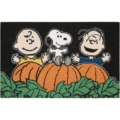 Peanuts Enhance Black/Orange Area Rug