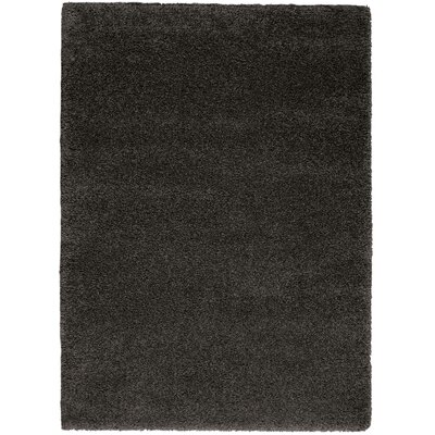 Parrish Dark Gray Area Rug Rug Size: Rectangle 710 x 910