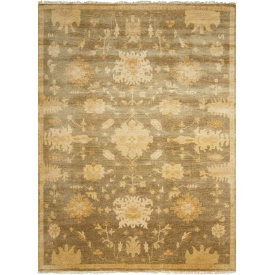 Siriano Sage Area Rug Rug Size: Rectangle 79 x 99
