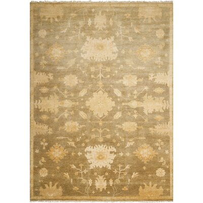 Siriano Sage Area Rug Rug Size: Rectangle 86 x 116