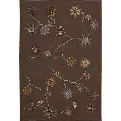 Williston Brown Area Rug Rug Size: Rectangle 73 x 93