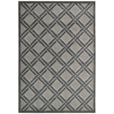 Illusions Gray Area Rug Rug Size: 36 x 56