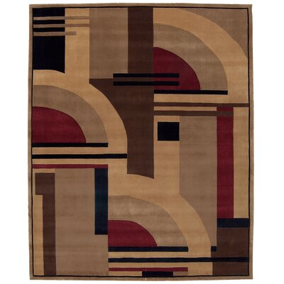 Dimensions Area Rug Rug Size: 19 x 29