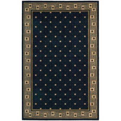 Dunnstown Midnight Area Rug Rug Size: Rectangle 36 x 56