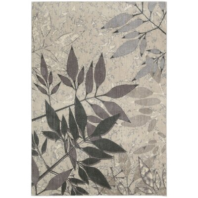 Hassie Gray Area Rug Rug Size: Rectangle 36 x 56
