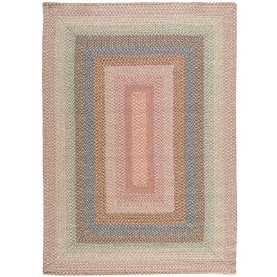 Dray Hand-Woven Coral Area Rug Rug Size: Rectangle 5 x 7