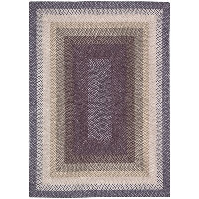 Dray Hand-Woven Area Rug Rug Size: Rectangle 76 x 96