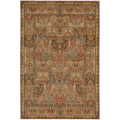 Living Treasures Brown Area Rug Rug Size: 76 x 96