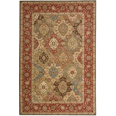 Living Treasures Rug Rug Size: 76 x 96
