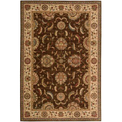 Living Treasures Brown Area Rug Rug Size: 36 x 56