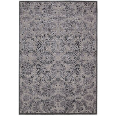 Driftwood Gray Area Rug Rug Size: Rectangle 53 x 75
