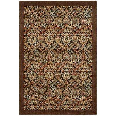Illusions Chocolate Area Rug Rug Size: 36 x 56