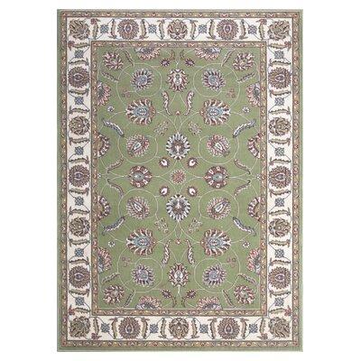 Modesto Green Rug Rug Size: 53 x 73