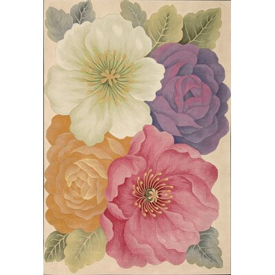 Newbury Novelty Area Rug Rug Size: Rectangle 76 x 96
