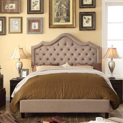 Alisa Queen Upholstered Panel Bed Color: Mocha