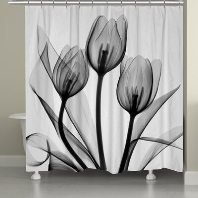 Digna Tulips Shower Curtain Color: Monochromatic Black