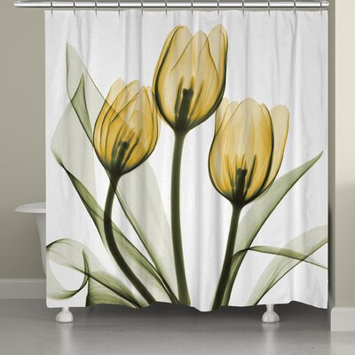 Digna Tulips Shower Curtain Color: Golden