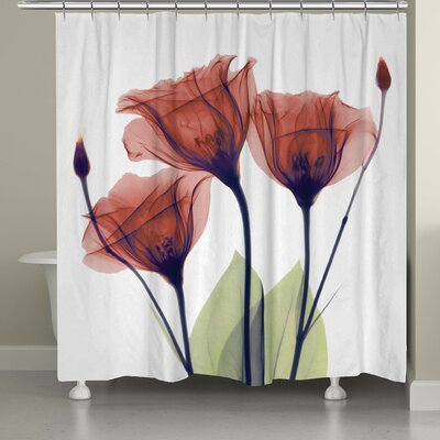 Castile Gentian Shower Curtain Color: Red