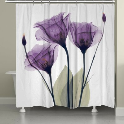 Castile Gentian Shower Curtain Color: Lavender