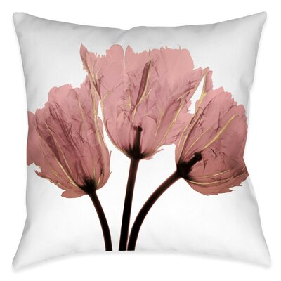 Beekman Blush Tulips X-Ray Outdoor Throw Pillow Size: 18 x 18