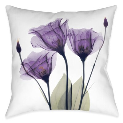 Castile Outdoor Throw Pillow Size: 20 x 20