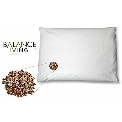 Balance Living Buckwheat Twin Memory Foam Standard Pillow Size: Twin