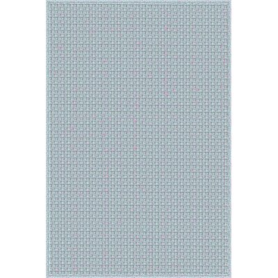 Myrtle Hand-Woven Blue Indoor/Outdoor Area Rug