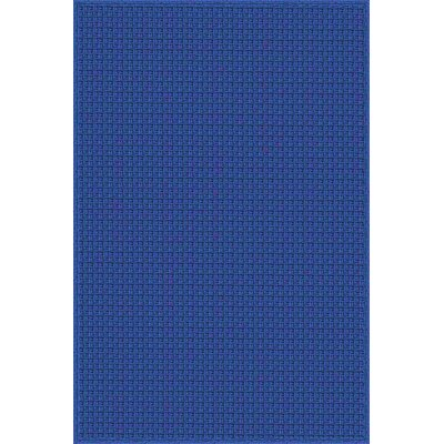 Myrtle Hand-Woven Blue Indoor/Outdoor Area Rug Rug Size: Rectangle 5 x 76