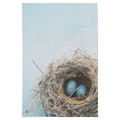 "Blue Nest"" by Elena Ray Photographic Print on Wrapped Canvas ATGR1162 31786198"