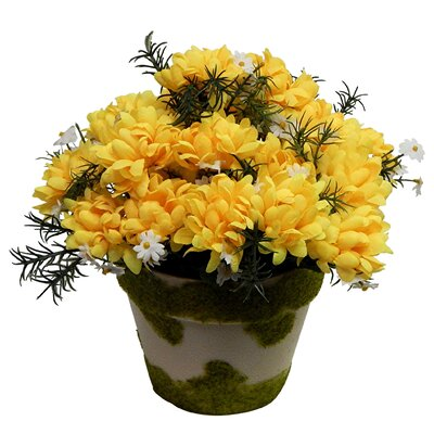 Mums in Faux Moss Covered Vase