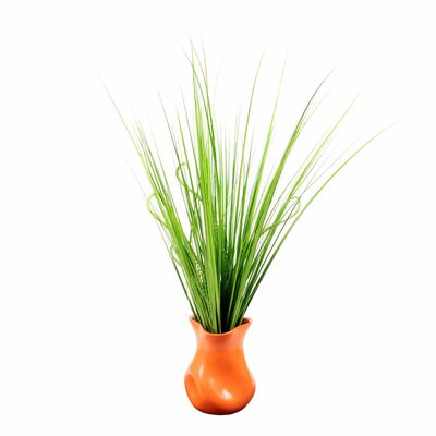 August Grove Fresh Foliage Grass in Decorative Vase