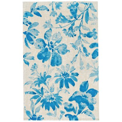 Aqua Area Rug Rug Size: Rectangle 96 x 13