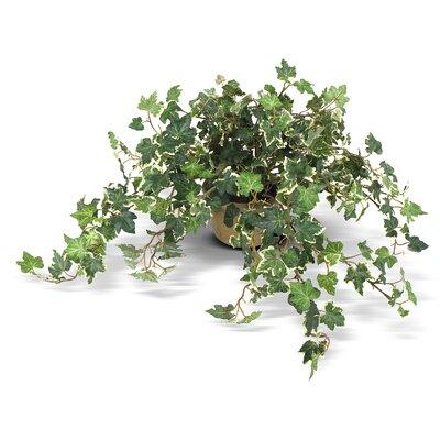Faux Ivy Realistic Floral Arrangements