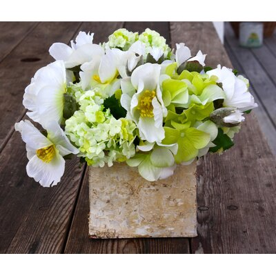 Hydrangea and Poppy in Birch Cube