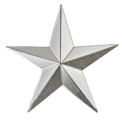 Mud Lake Mirrored Star Wall Décor