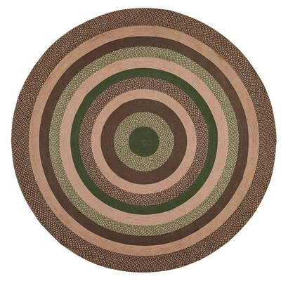 Fabiana Brown/Green Area Rug Rug Size: Round 8