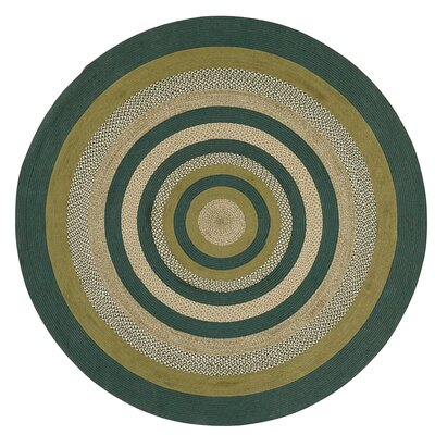 Armand Green Area Rug Rug Size: Round 8