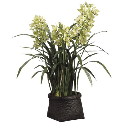 Cymbidium Faux Florals Plant in Basket