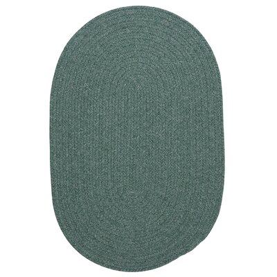 Navarrette Teal Area Rug Rug Size: Oval Runner 2 x 10