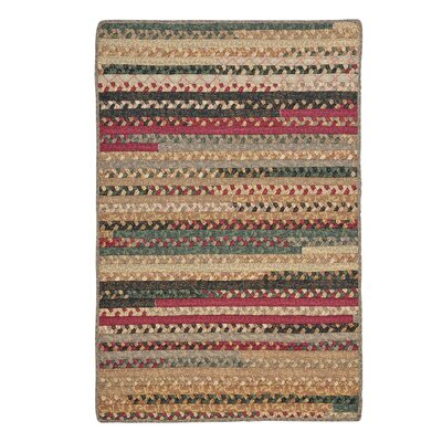 Surette Cranberry Blend Rug Rug Size: Rectangle 4 x 6