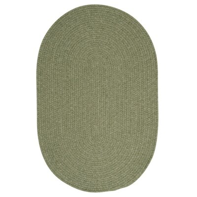 Navarrette Green Area Rug Rug Size: Oval 12 x 15