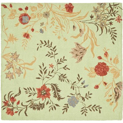 Ginger Light Green Area Rug Rug Size: Square 6