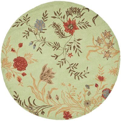 Ginger Light Green Area Rug Rug Size: Round 6
