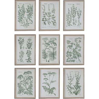 Herb Garden Prints 9 Piece Framed Graphic Art Set