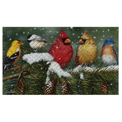 Diamondville Backyard Birds on Snowy Branch Embossed Doormat