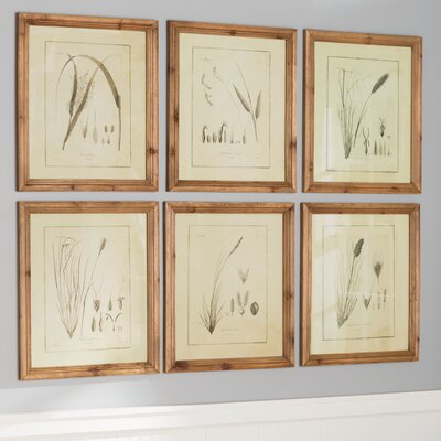 Sepia Tone Grass 6 Piece Framed Graphic Art Set